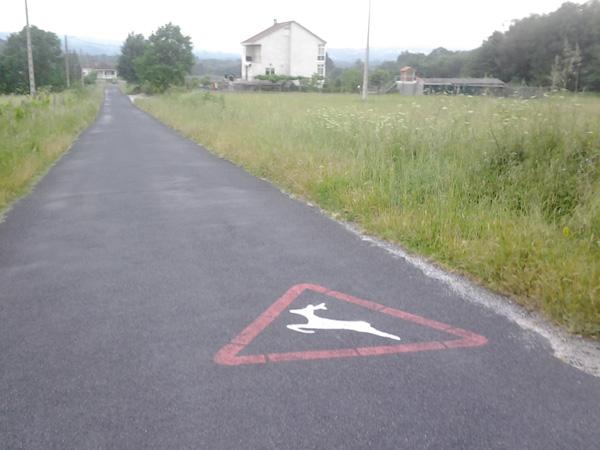 images_wonke_actualidad_nacional_20120618-unitega-accidentes