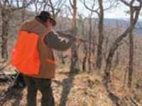 La seguridad durante el ejercicio de la caza mayor