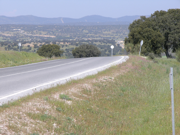 images_wonke_actualidad_nacional_septiembre2013_20130924_carretera