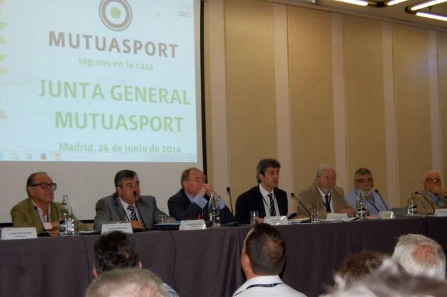 Asamblea 2014 mutuasport