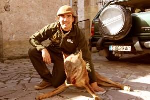 353 - Canis Lupus Signatus (3)