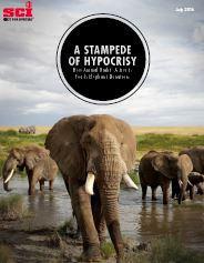 stampede of hypocrisy informe sci elefantes