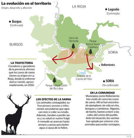 Evolución de los casos de ciervos con sarna. © HERALDO
