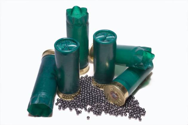 munición plomo cartuchos