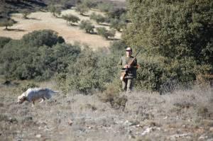 359 - Fichas de caza (2)