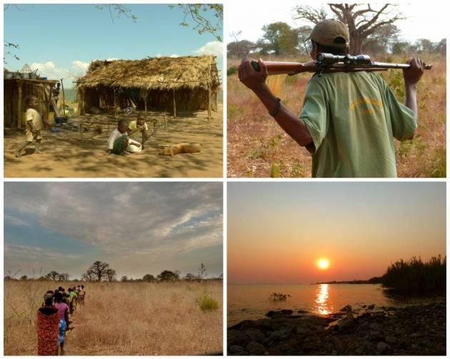 359 - Mozambique (1)