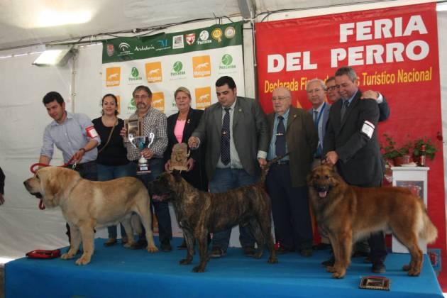 Ganadores del Concurso Razas Españolas.