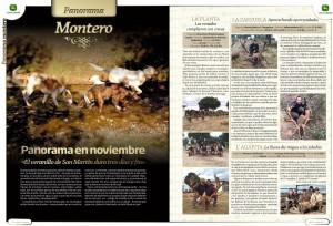 Monterias