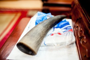 A rhino horn for sale on the table of a black market animal trade dealer at his home in Hanoi, Vietnam. © Robert Patterson / WWF