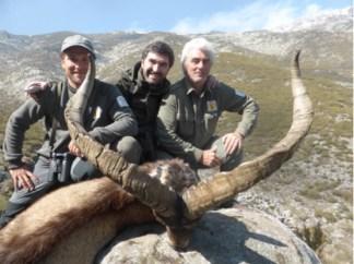 5 trofeo macho cabra montes cabezas