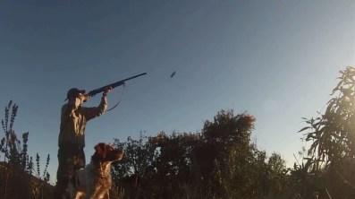 cazador ADECAP