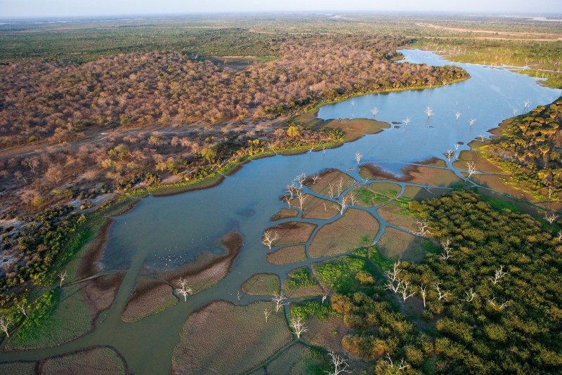 Selous Game Reserve. Tanzania, East Africa