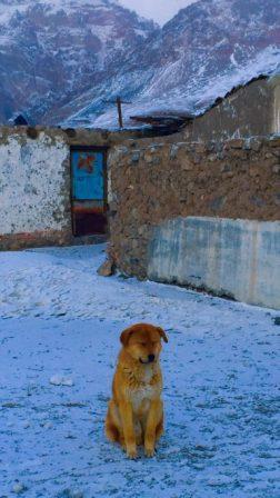 34 tayikistan marco polo bolshoi