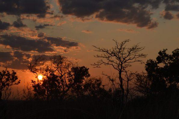 tanzania crepúsculo paisaje