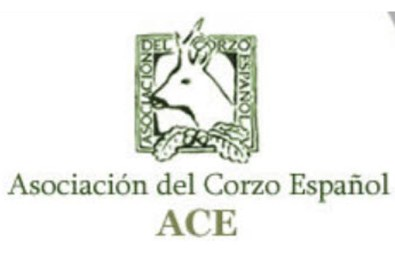 logo ACE corzo