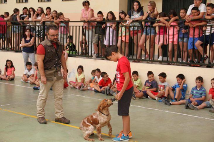 el-perro-un-amigo-especial