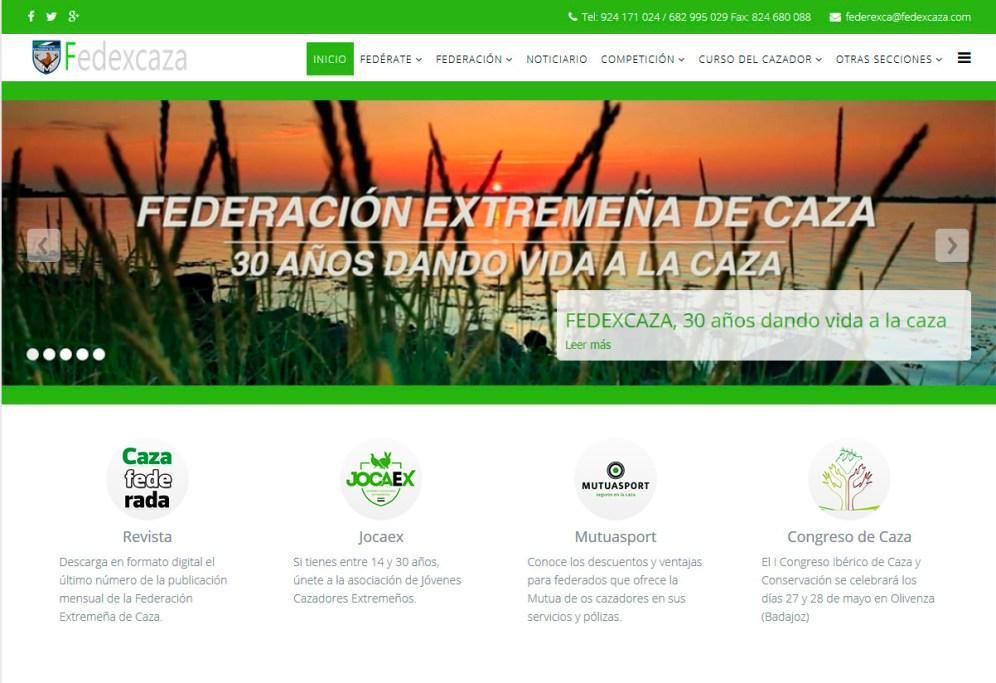 web-fedexcaza