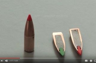 Norma TipStrike, la munición para monterías y batidas
