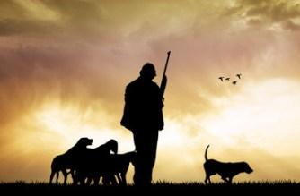 España es, tras Francia, el país europeo con más cazadores