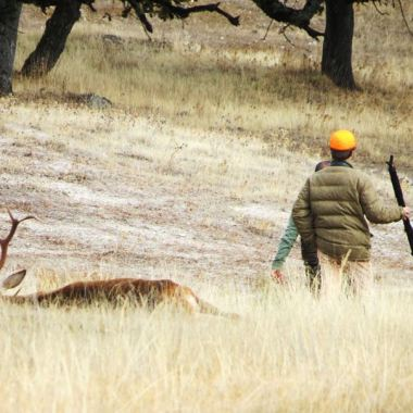 mayor encuesta caza y safaris wonke