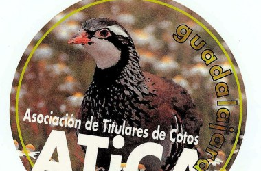 ATICA Guadalajara