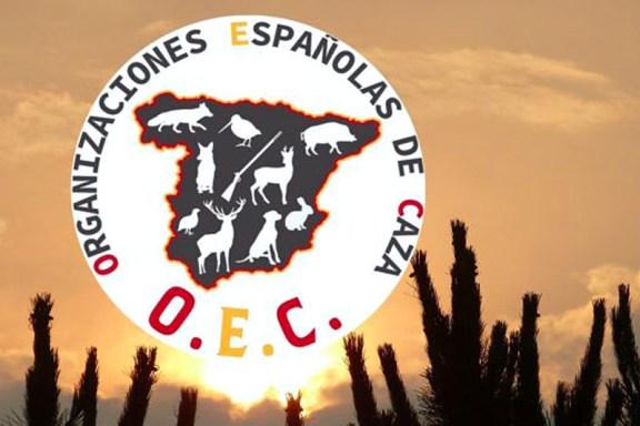 Comunicado oficial de OEC