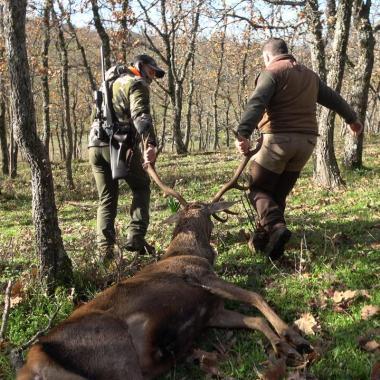 limitaciones caza