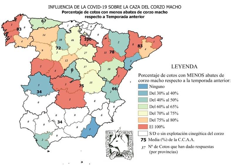 coronavirus caza corzos