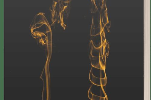 Flesh Evidence - Malcolm Hollingdrake - 3D Book Cover