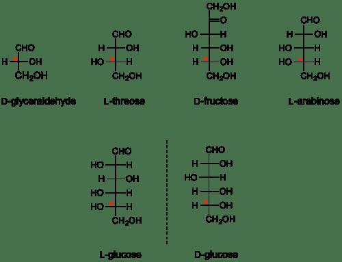 Absolute Configuration D L Nomenclature CAZypedia