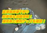 富津海岸潮干狩り2019/駐車場&混雑情報!潮見表と便利グッズを確認!