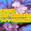 松江城山公園の桜の開花・満開見頃まとめ2019!ライトアップ時間も確認!