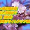 霞ヶ城公園の桜2019/開花と見頃は?出店(屋台)駐車場やライトアップ情報!