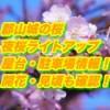 郡山城の桜2019夜桜ライトアップ・屋台・駐車場情報!開花・見頃も確認!