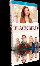 Blackbird - L