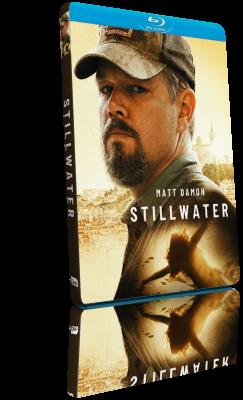La ragazza di Stillwater (2021) MD MP3 WEBDL 720p MKV – ITA