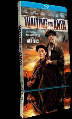 Aspettando Anya (2020) FullHD 1080p ITA/AC3 5.1 (Audio Da WEBDL) ENG/AC3+DTS 5.1 Subs MKV