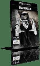 Frankenstein (1931) [HDR] UHD 2160p ITA/AC3+DTS 2.0 ENG/DTS-HD MA 2.0 Subs MKV