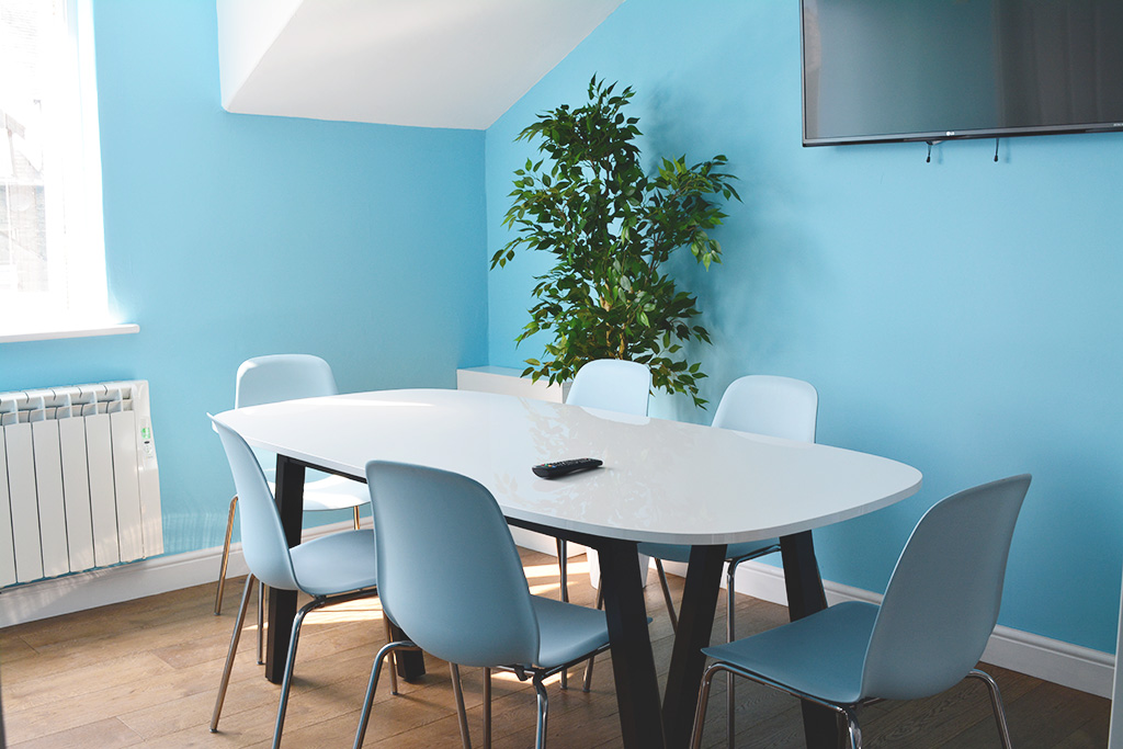 Meeting room with plant