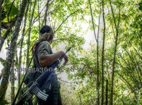 Sorsogon NPA's Declare Unilateral Ceasefire