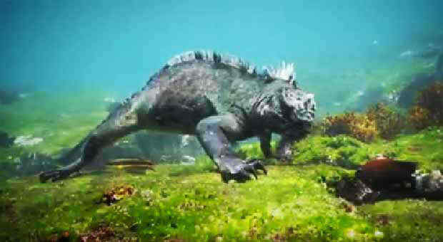 2016_0410_marine-iguana