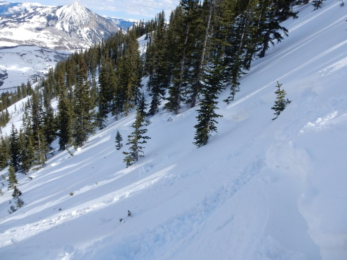 Looking east across the crown of the skier triggered slide in Climax Chutes last week.