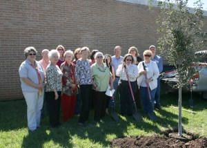 Tree Planting in memory of Clarice McGuffin
