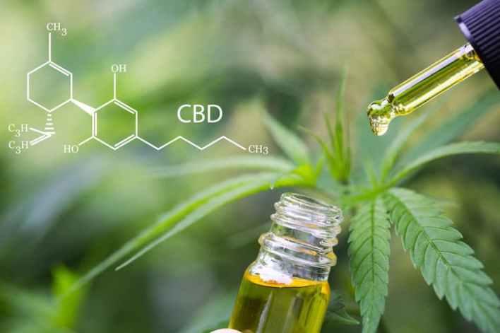 actus cbd sur cannabis cbd info