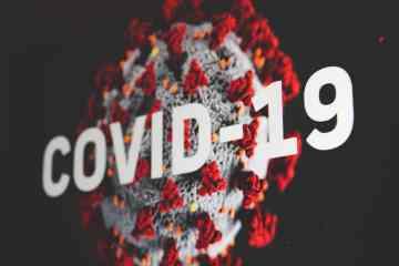 CBD gegen Covid-19