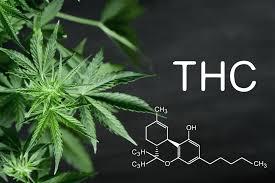 Quelques avantages incroyables de l'utilisation du THC