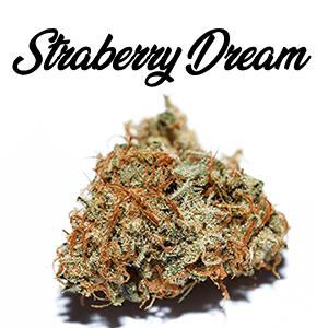 cbd blueten straberry dream