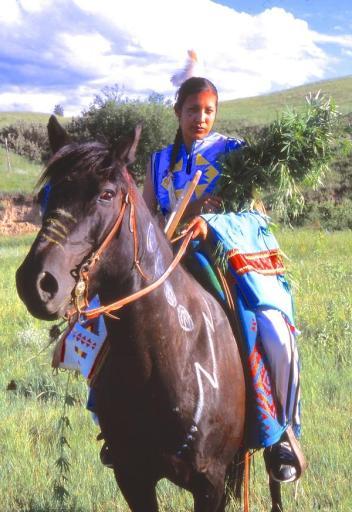 Rosebud Hemp Horse