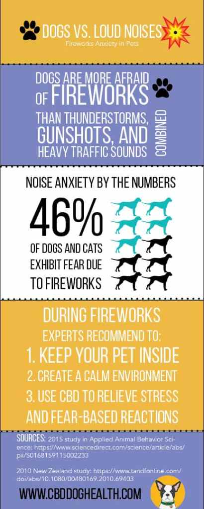 Fireworks Infographic CBD Dog Health