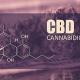 cannabidiol defined herbal risings cbd dispensary